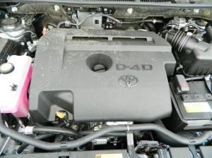 DSCN3549