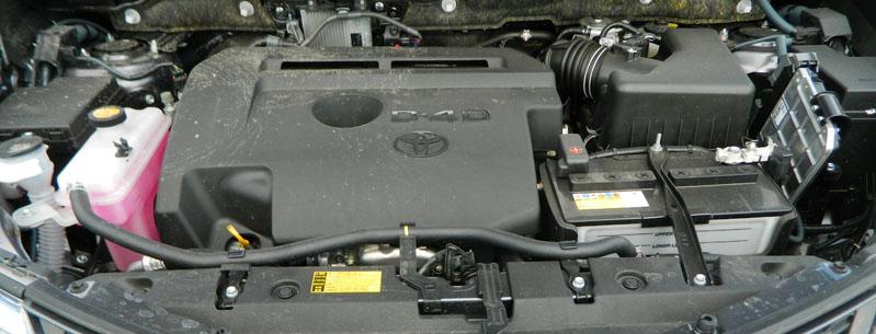 Motor HOrizont DSCN3548